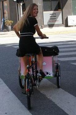 Lyserød ko kan fås som print på cyklen