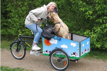 Pias hund elsker også at være i den nye cykel